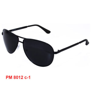 Модель PM 8012