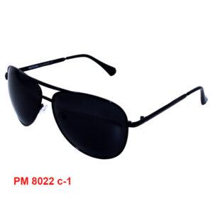 Модель PM 8022